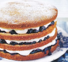 Vanilla and blackcurrant sponge